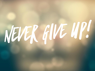 Never give up_opt